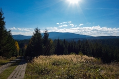 Brockenblick am Harzer Grenzweg