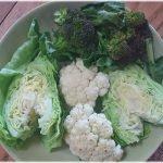 Broccoli, Spitzkohl und Blumenkohl frisch gedämpft