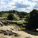 Burg Regenstein: Aussicht von oben auf das Gelände